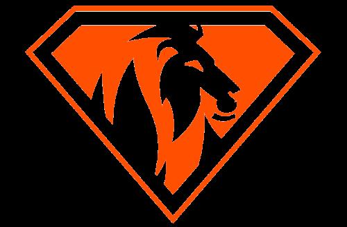 Das Logo der Offenburger Security Firma Confidence Security